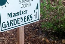 SCMGA Demonstration Gardens in Glen Rose, TX / One of the ongoing goals of the Somervell County Master Gardeners is to maintain demonstration gardens in the community. Look at what we have around town, and come see them if you're ever in Glen Rose Texas.