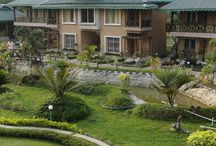 Green Touch Lataguri Eco Resort