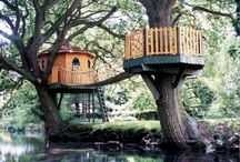 Treehouse  / by Christina Cohn