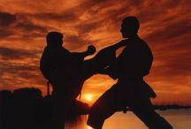 Martial arts / Martial arts karate samurai do chi