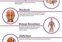 Fysiologi