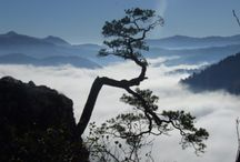 Góry moja miłość / Oto zdjęcia zgłoszone do Konkursu Foto organizowanym na serwisie www.globtroter.pl