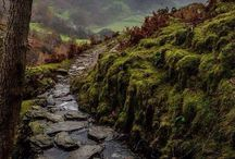England Ireland Scotland Wales