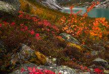 Norway , september