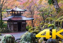 Kyoto - 4K Videos