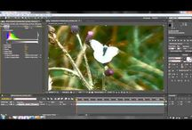 Adobe After Effects / Adobe After Effects