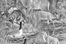 Greyscale Animal Pages