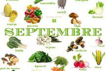 saison pour fruits et lègumes