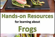 Homeschool Unit: Amphibians