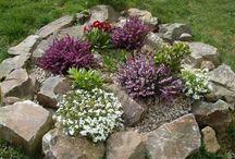 Stones Gardens