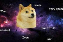 Doge Memes / There are many amaze Doge memes