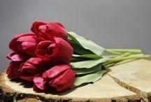 Onze bloemen
