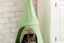 ropa de gatitos / linda ropa y accesorios para gatitos(camas-rascadores y mucho mas)