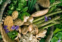 Wild Food & Foraging / Food & Foraging images I like
