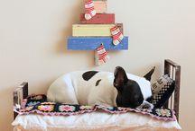 dog and cat-hunde und katze idees....