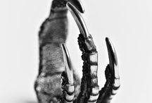 Jewelry / by Pamela Kudlacek