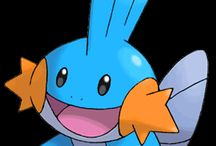 Pokemon Party / with special tribute to mudkip <3