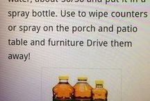"""Remedies for """"pests"""""""