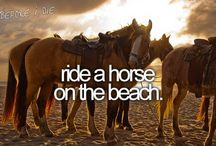 bucket list....things I would love to do before I die. / by just Becky