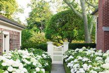 Garden :-)
