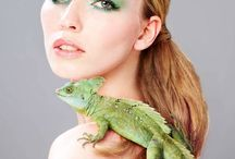 Reptile shoot
