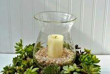succulent centrepiece