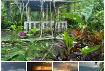 Date ideas in Micronesia / Top romantic things to do in Micronesia