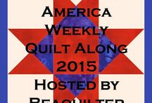 Quilts/Quilting - Fifty States QAL