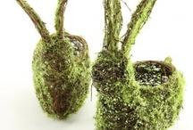 I Heart Moss