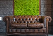 MOSSwall / MOSSwall® is the new generation of indoor vertical gardens, customizable in shape, size and colour, which does not require any maintenance. It is a highly performing patented product which obtained fire certificates as well as sound absorption.is developed on a panel made of galvanized steel sized 40×60 cm, coated on the visible side by MOSS. The vertical garden of MOSSwall is kept intact over the years in all kind of environments with a minimum rate of humidity of 40-50%.
