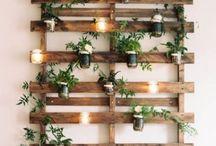 Petits pots de plantes