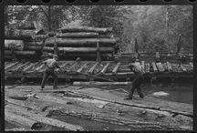 Appalachian Logging