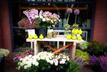 zomerbloemendag &bloemen