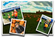 Pumpkin Patch / Hop aboard our Pumpkin Patch Train Rides where we'll take you to our pumpkin patch to choose your own great pumpkin to take home! Fun for the whole Family! Tickets on sale now! https://tickets.waterloocentralrailway.com/search