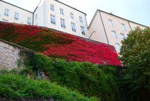CITY: LUXEMBURG
