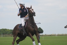 The Polo Club, Dullingham / The Granary Estates also comprises of the polo grounds at Dullingham.  Set within 32 acres of grassland complete with a sporting pavilion set in the middle this is the perfect venue for sporting occasions or big marque events