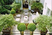 Verde terrazzo
