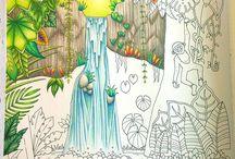 Basford Waterfall