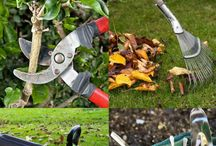Revamp your yard / Your lawn, garden and landscape shrubs need some attention. Here are some timely tips to keep them looking beautiful.