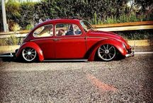 iennaco frederic / beetle