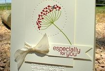 Flower Cards / by Donna Phelps
