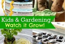 Garden-riffic!  / Turn your kids loose with these gardening projects, and watch your space come to life!