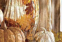 FALL DECOR / Autumn is a time of stunning natural beauty with decorating ideas just waiting to be discovered. From lustrous gourds and breath-taking fall foliage to pine cones, birch bark, dried leaves and twigs, it's easy to  create a stylish, cozy and memorable setting for gatherings with friends and family.