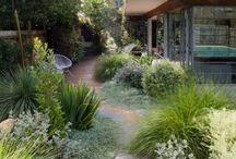 Ogród żwirowy