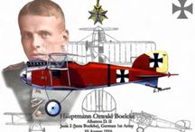 Historical Airplanes and Aces of WWI  and WWII