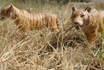 schleich tigre