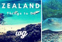 New Zealand Day Trips