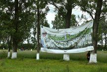 Echipa de Campanie a PSD Arges, a participat la Sarbatoarea Narciselor / Echipa de Campanie a PSD Arges, a participat la Sarbatoarea Narciselor, in comuna Negrasi, eveniment ajuns la cea de-a 64 editie.