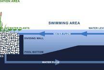 Prirodny bazen