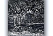 Print DrawingOlive trees